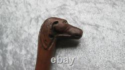 Popular Art Cane With Carved Wooden Dog Head Sculpted Buis Puzzle Head